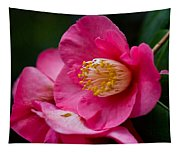 Japanese Camellia-the Official State Flower Of  Alabama Tapestry