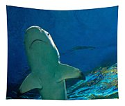 Jaws Tapestry