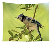 Jay In Nature Tapestry