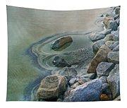 Jekyll Island Tidal Pool Tapestry