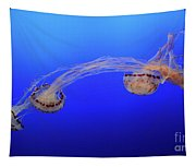 Jellyfish 7 Tapestry