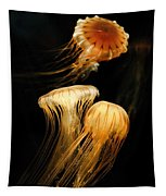 Jellyfish Trio Floating Against A Black Tapestry