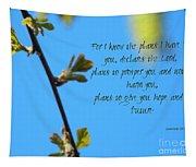 Jeremiah 29 Tapestry