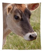 Jersey Cow Portrait Tapestry