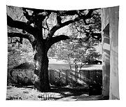 Jfk-the Stockade Fence-dealy Plaza Tapestry