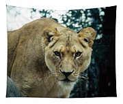 Join Me For Lunch? Tapestry