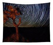 Joshua Tree Star Trails Tapestry