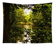 July Indian Lake Looking North Tapestry