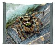 Jumper Spider 3 Tapestry