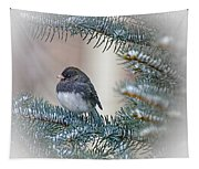 Junco In Pine Tapestry