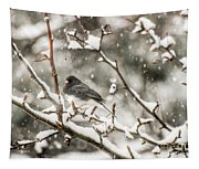 Junco In The Snow Tapestry
