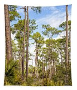 Ancient Looking Florida Forest At Aubudon Corkscrew Swamp Sanctuary Tapestry