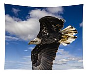 Juvenile Bald Eagle Tapestry