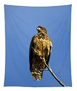 Juvenile Perch Tapestry