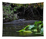 Juvie Gator Tapestry
