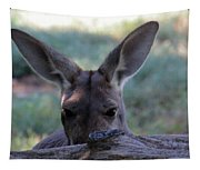 Kangaroo-4 Tapestry