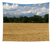 Kansas Wheat Field 5a Tapestry