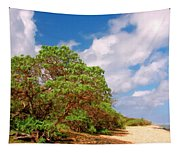 Kauai Beach Tapestry