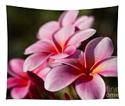 Kaupo Summer Treasure Tapestry
