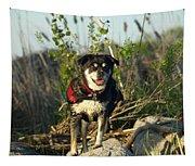 Kayaker's Best Friend Tapestry