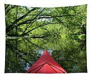Kayaking Backwater Mississippi 1 Tapestry