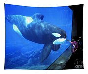 Keiko The Killer Whale Oregon Coast Aquarium Pat Hathaway Photo  1996 Tapestry