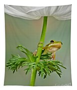 Kermits Canopy Tapestry