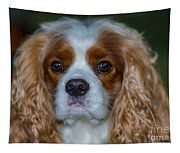 King Charles Tapestry