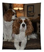 King Charles Dogs Tapestry