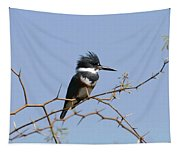 Kingfisher On Mesquite Tree Tapestry