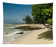 Kite Beach Kanaha Beach Maui Hawaii Tapestry