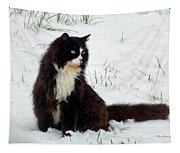 Kitty Cat In The Snow Tapestry