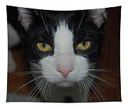 Kitty Cat Tapestry