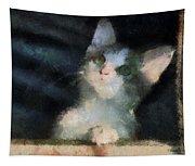 Kitty Photo Art 05 Tapestry