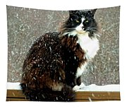 Kittycat In The Snow On The Fence Tapestry