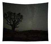 Kookerboom Tree With Milky Way Tapestry