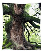 Kyoto Temple Tree Tapestry