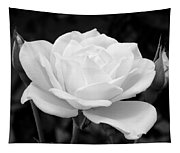 La Rosa In Black And White Tapestry