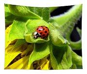Ladybug And Sunflower Tapestry