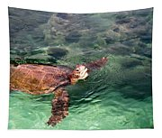 Lager Head Turtle 002 Tapestry
