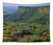 1a5801-e-lake Abert And Abert Rim V Tapestry