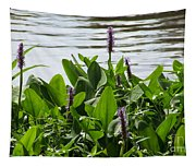Lake Day Tapestry