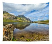 Lake Idwal Tapestry