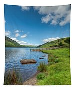 Lake In Wales Tapestry