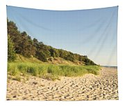Lake Michigan Dunes 02 Tapestry