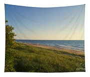 Lake Michigan Shoreline 05 Tapestry