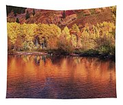 Lake Reflection In Fall 2 Tapestry