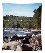 Lake Superior Shoreline Abstract Tapestry