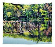 Lake Waterford Tapestry