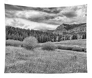 Lamar Valley Looking Towards Specimen Ridge Bw- Yellowstone Tapestry